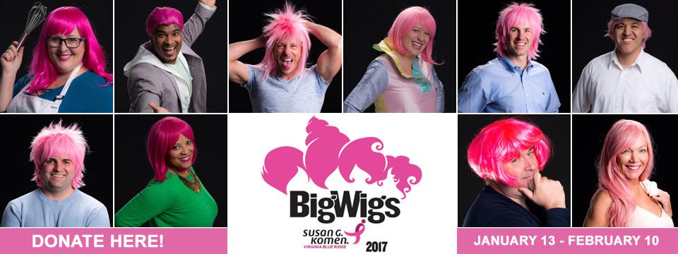 ROA-2017-Big-Wigs-Banner-copy